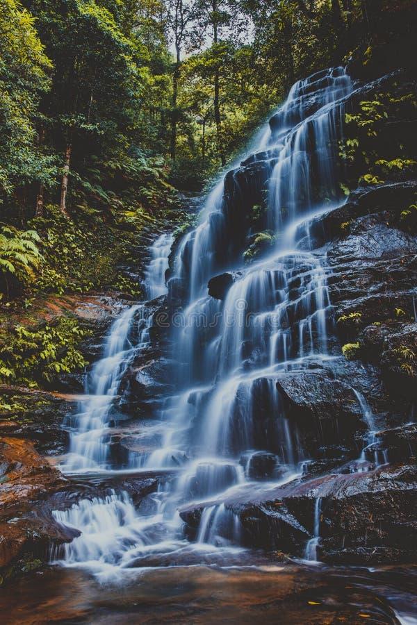 Sylvia Falls blåa berg, Australien arkivfoto