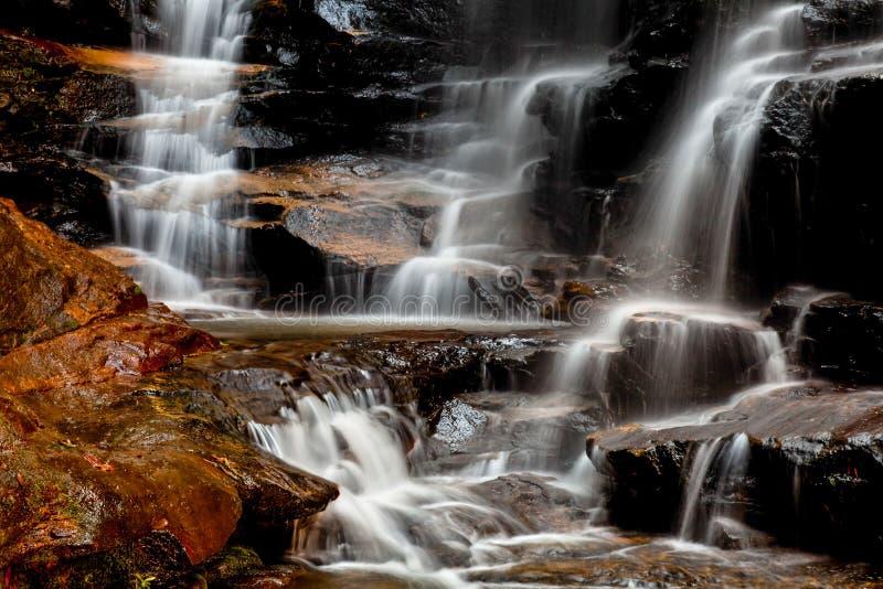 Sylvia Falls in Blauwe Bergen van Australië, Nieuw Zuid-Wales, NS stock afbeeldingen