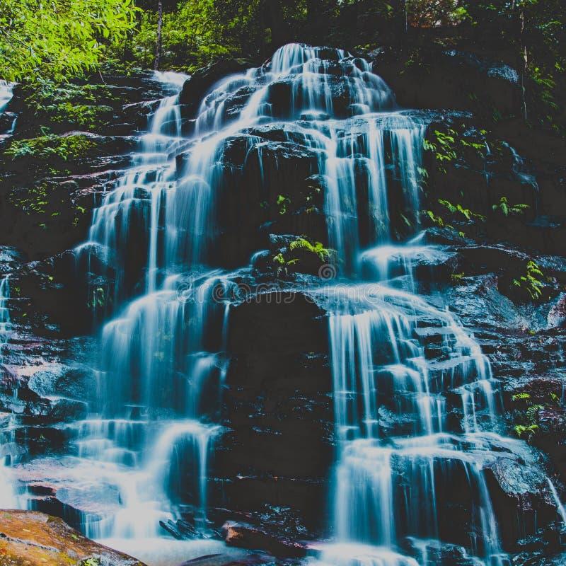 Sylvia Falls, montanhas azuis, Austrália imagem de stock