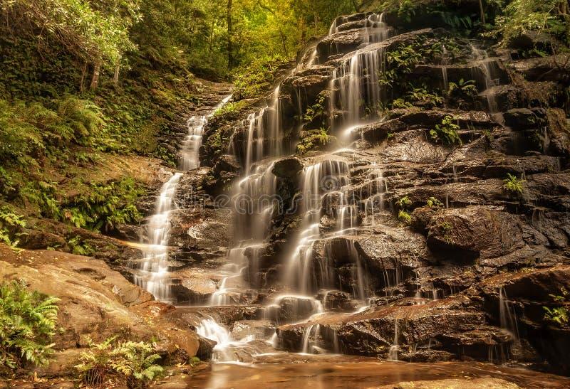 Sylvia Falls, vallée des eaux, montagnes bleues, Australie image stock