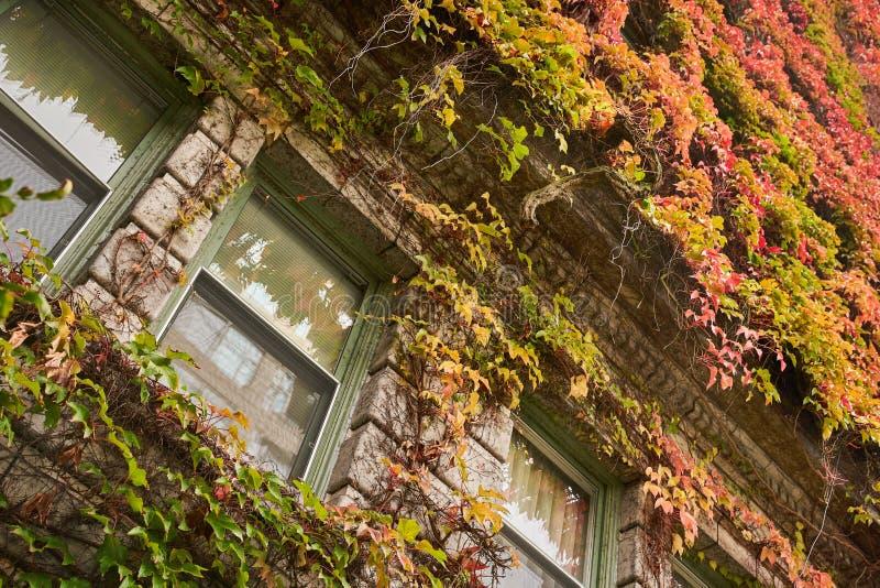 Sylvia Hotel Autumn royalty-vrije stock afbeelding