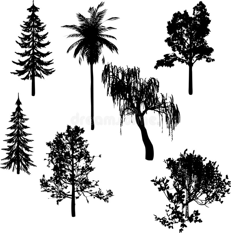 sylwetek czarny drzewa royalty ilustracja