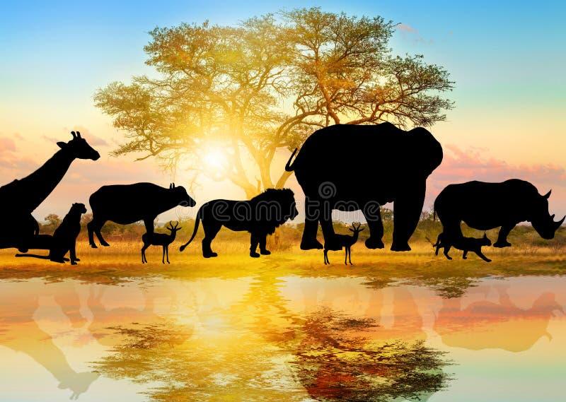 Sylwetka Afrykańska przyroda royalty ilustracja