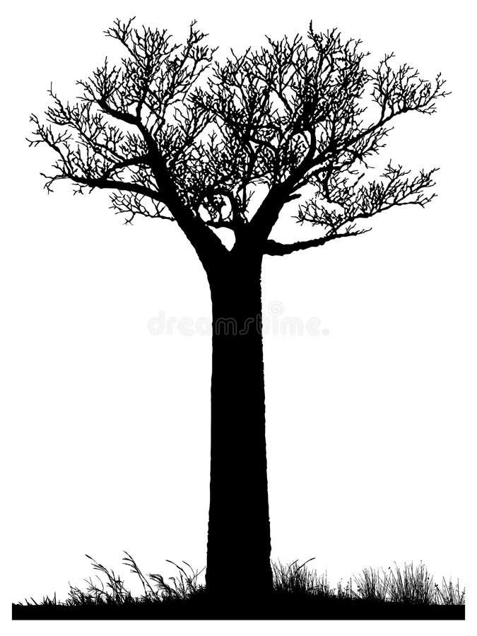 Sylwetka baobabu drzewo royalty ilustracja
