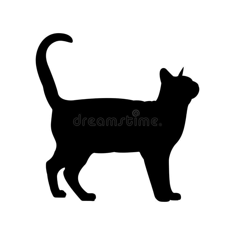 sylwetka czarnego kota Eleganckiego kota boczny widok z obraca wokoło głowę royalty ilustracja