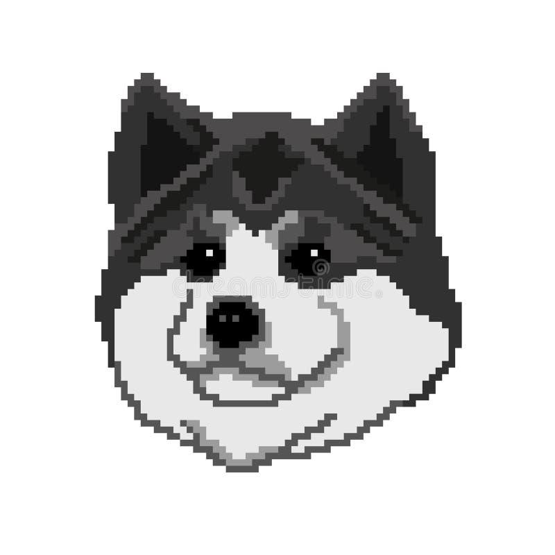 Sylwetka czarny pies Akita Inu traken, kaganiec, portret malowa? w postaci kwadrat ilustracji