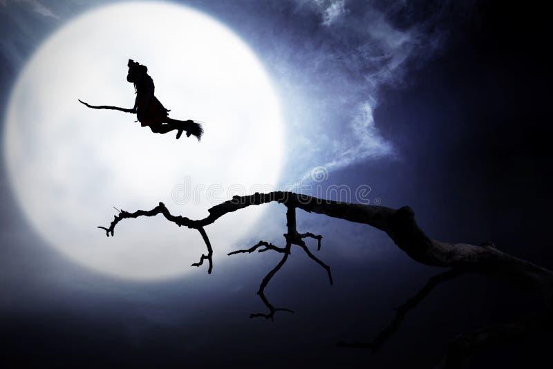 Sylwetka czarownicy latanie z broomstick zdjęcie stock
