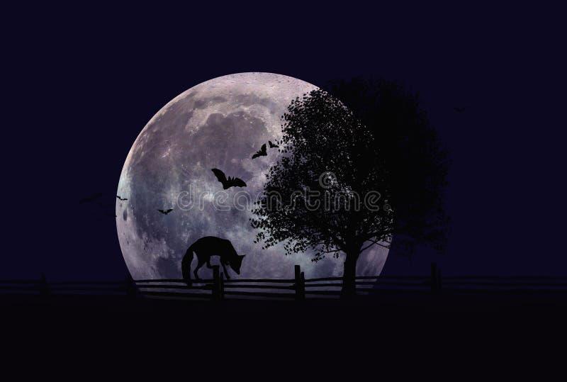 Sylwetka czerwonego lisa odprowadzenie na ogrodzeniu przy nocą fotografia royalty free
