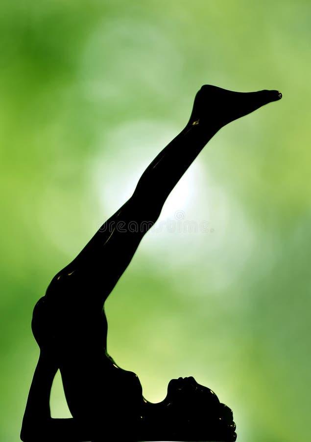 Sylwetka damy joga zdjęcie royalty free