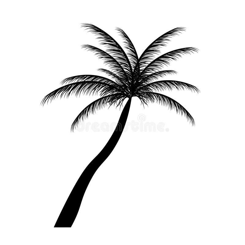 Sylwetka drzewka palmowe. Wektorowa ilustracja. ilustracji