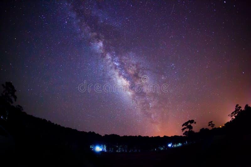 Download Sylwetka Drzewny I Milky Sposób Długa Ujawnienie Fotografia Zdjęcie Stock - Obraz złożonej z nauka, cossack: 53784054