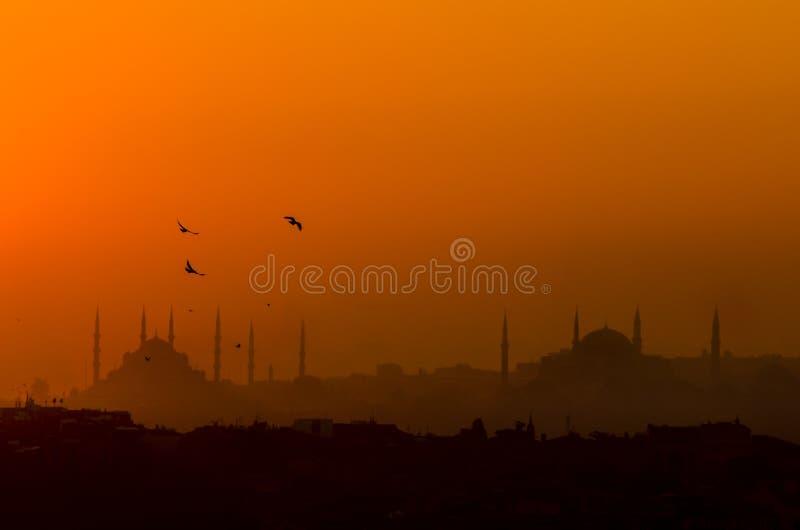Sylwetka Istanbuł z Hagia Sophia i Błękitny meczet obraz royalty free