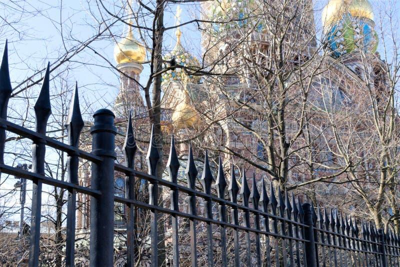 Sylwetka katedra wybawiciel na krwi przez parkowych drzew w St Petersburg, Rosja obraz stock