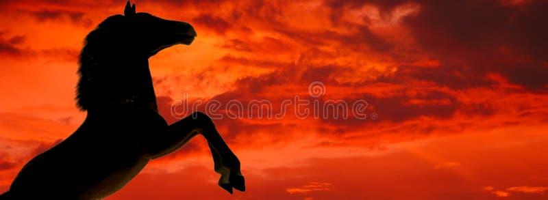 Download Sylwetka końska obraz stock. Obraz złożonej z zmierzch, czerń - 38707