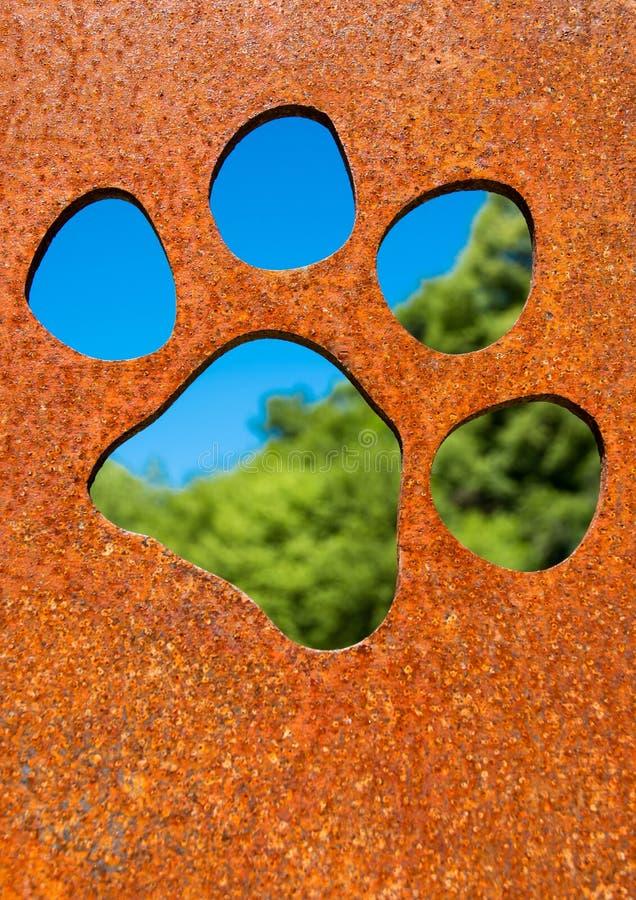 Sylwetka kot łapa w ośniedziałej metal ścianie obraz stock
