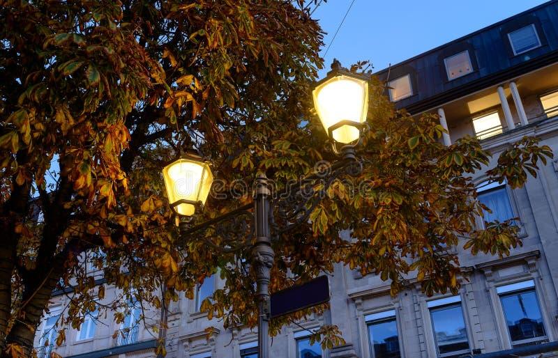 Sylwetka latarni ulicznej kontrastowania światło na tle jaskrawi żółci liście Jesień dzień zdjęcie stock