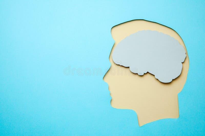 Sylwetka mężczyzna i mózg wśrodku głowy na błękitnym tle Odbitkowa przestrzeń dla teksta zdjęcie royalty free