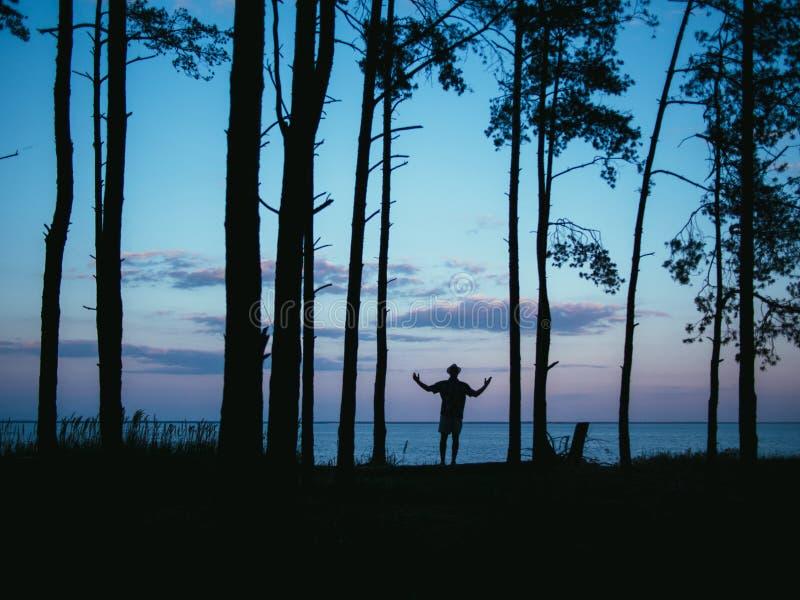 Sylwetka mężczyzna pozycja w lasowych wydźwignięcie rękach z dennym zmierzchu tłem zdjęcia stock