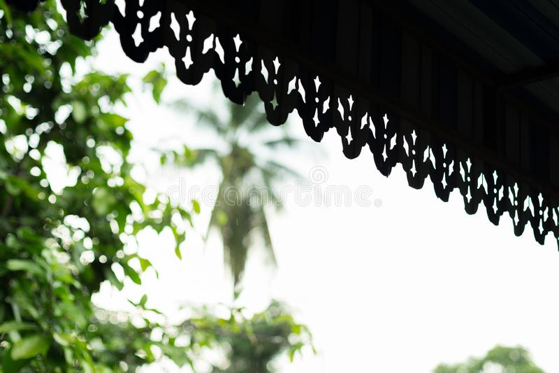 Sylwetka okapy na naturalnym tle obrazy royalty free