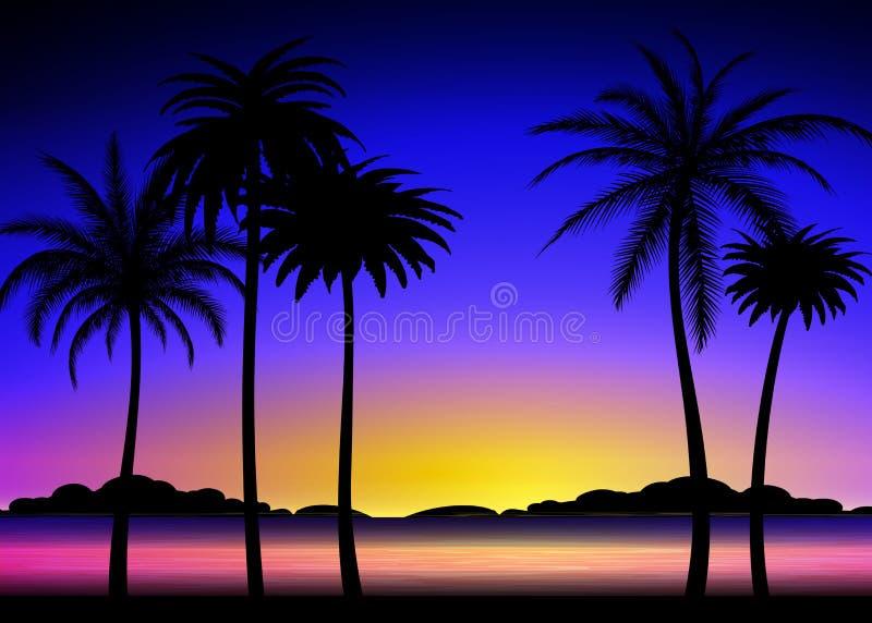 Sylwetka palmy na tropikalnym zmierzchu ilustracji