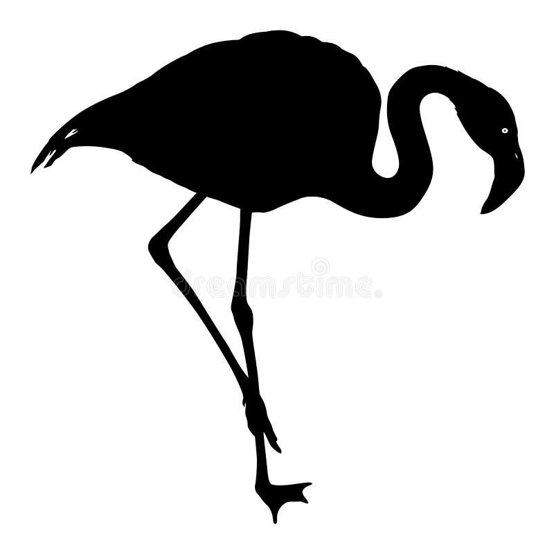Sylwetka ptasi flaming na białym tle ilustracji