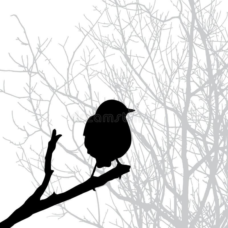 sylwetka ptasi wektor ilustracji