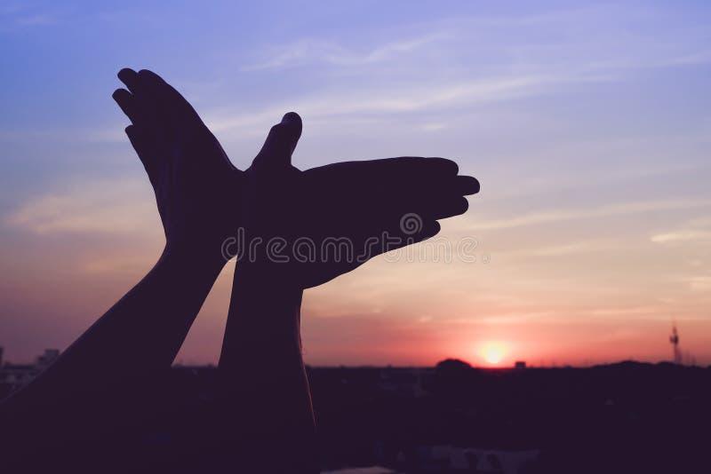 Sylwetka ręka gest jak ptasi latanie zdjęcie stock