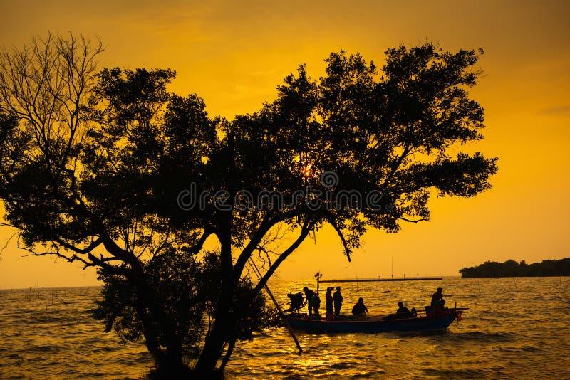 Sylwetka rybacy na łodzi przy zmierzch sceną Z Pięknym Drzewnym przedpolem Rybołówstwa styl życia w Złotej godzinie przy zatoką fotografia royalty free