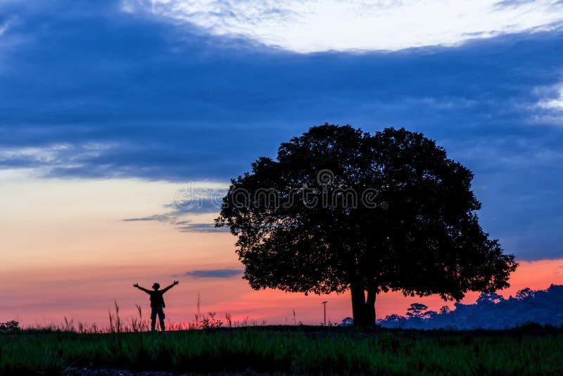 Sylwetka samodzielny drzewo na trawy polu z mężczyzna pozycją pobliską i podnosi dwa ręki z w górę tła obraz royalty free