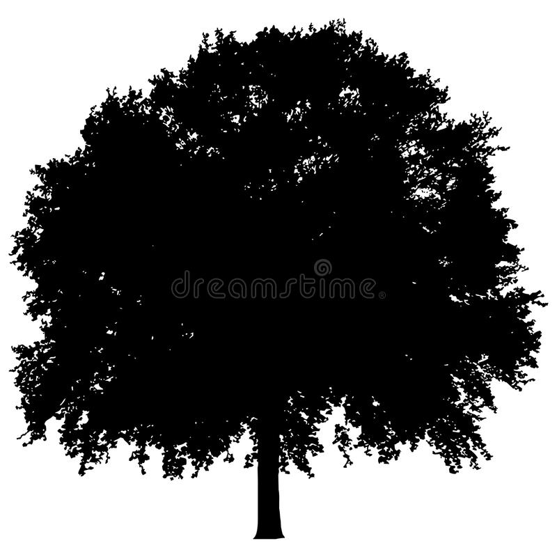 Sylwetka samotny drzewo ilustracja wektor