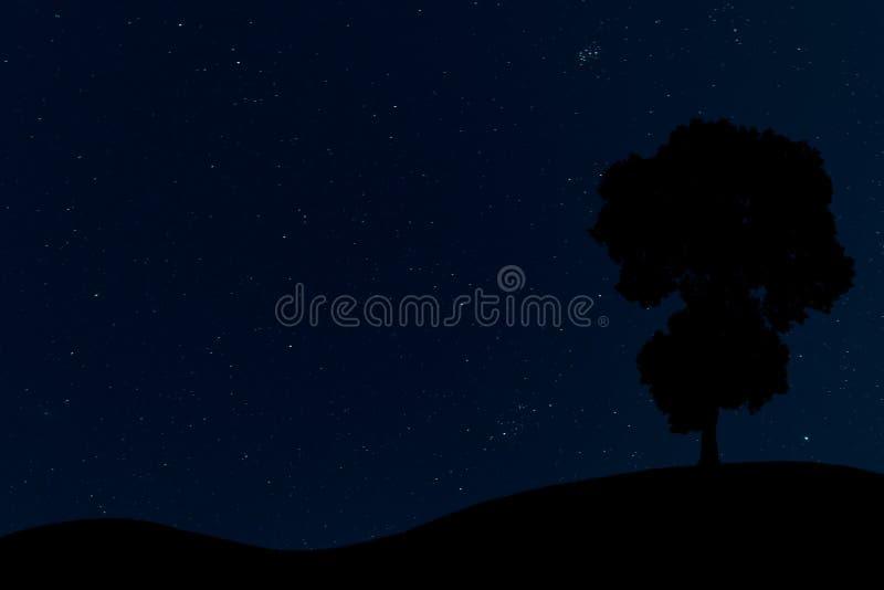 Sylwetka samotny drzewo w głębokim nocnym niebie ilustracji