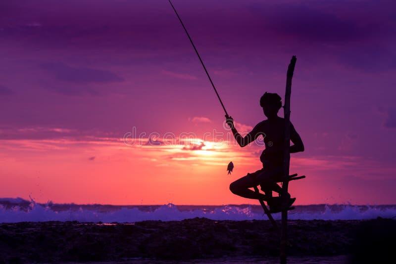 Sylwetka stilt rybak przy zmierzchem w Koggala, Sri Lanka fotografia royalty free