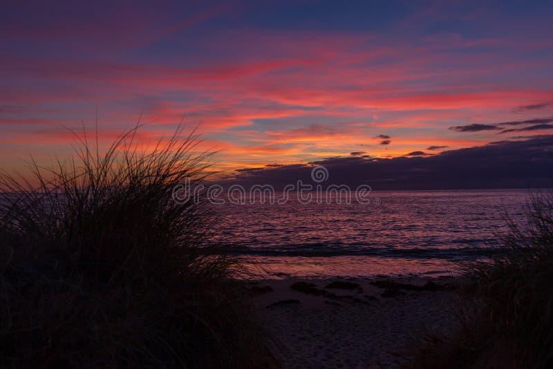 Sylwetka wysoka trawa przy plażowym zmierzchem w Normandy, Francja fotografia stock