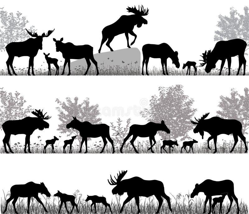 Sylwetki łosie amerykańscy także wymieniali łosie i swój lisiątka outdoors royalty ilustracja