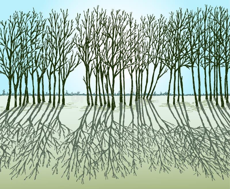 Sylwetki drzewa i ich cienie w wiosna słonecznym dniu ilustracja wektor