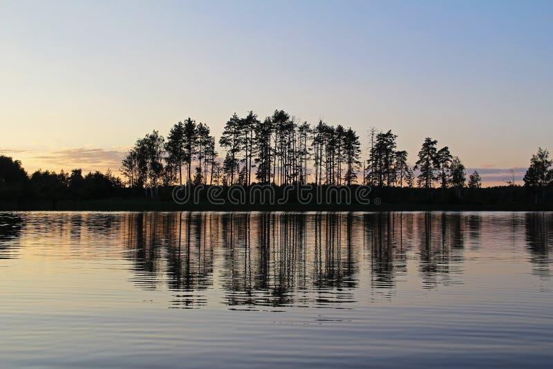 Sylwetki drzewa i kolorowy niebo odbijają w lasowym jeziorze w wieczór Niezwykła i malownicza scena Rosja obraz stock