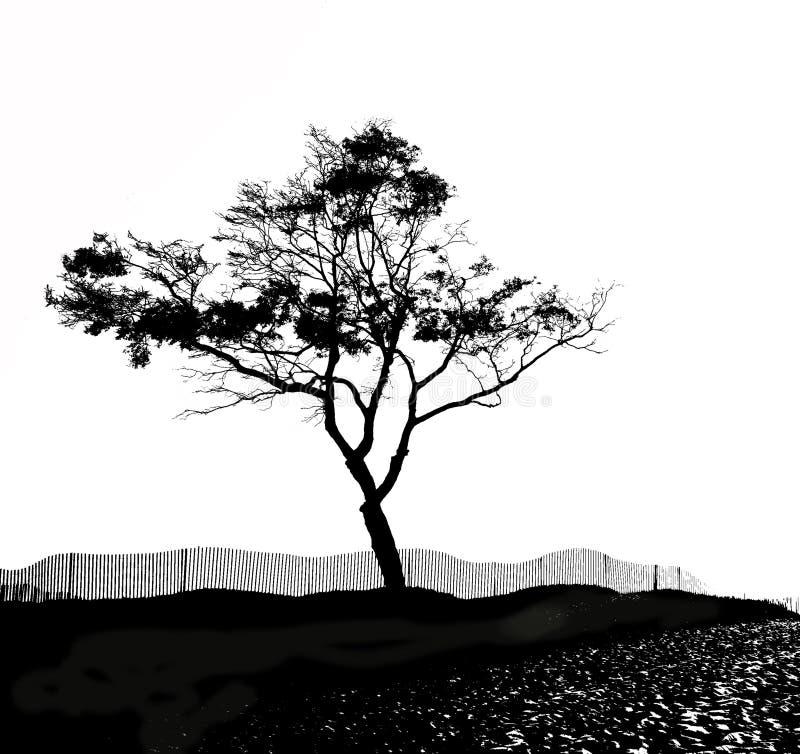 sylwetki drzewo ilustracja wektor
