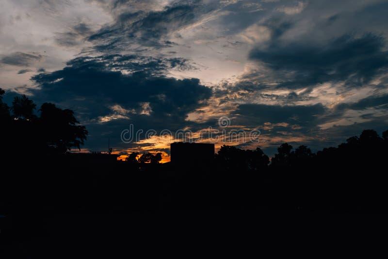 Sylwetki drzewo w wieczór przy złotą godziną fotografia stock