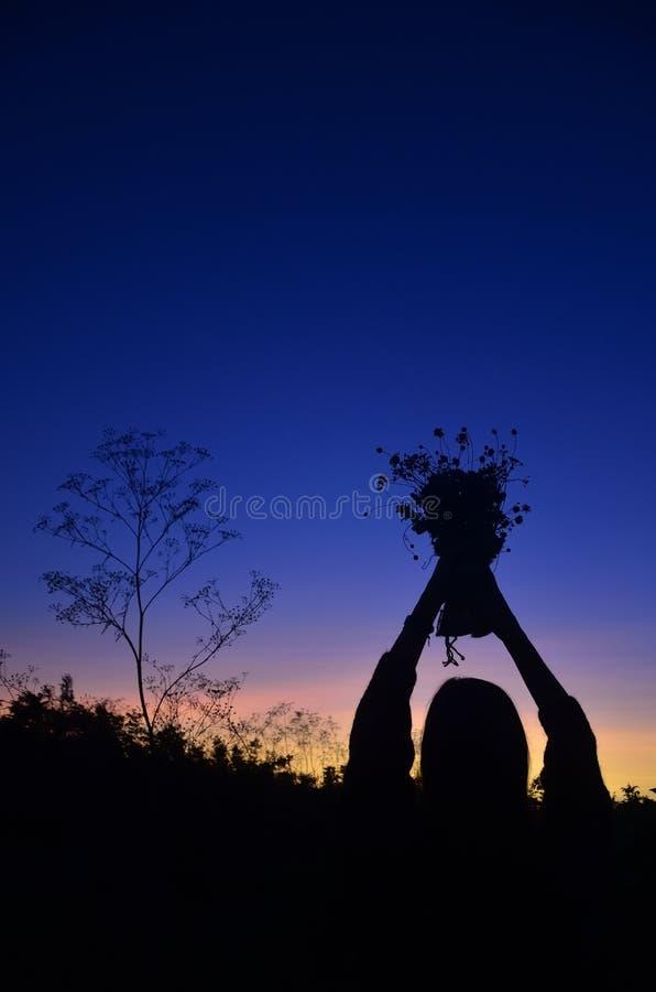 Sylwetki dziewczyna z bukietem w polu wśród wysokiej trawy Dziewczyna podnosił jej bukiet nad jej głową fotografia stock