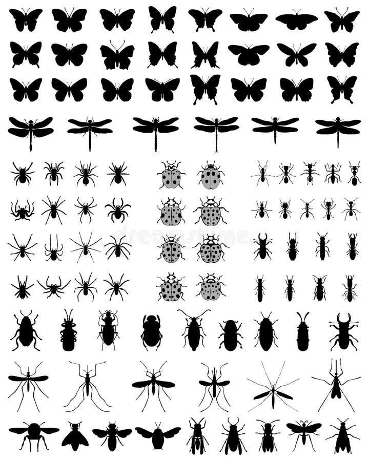 Sylwetki insekty ilustracja wektor