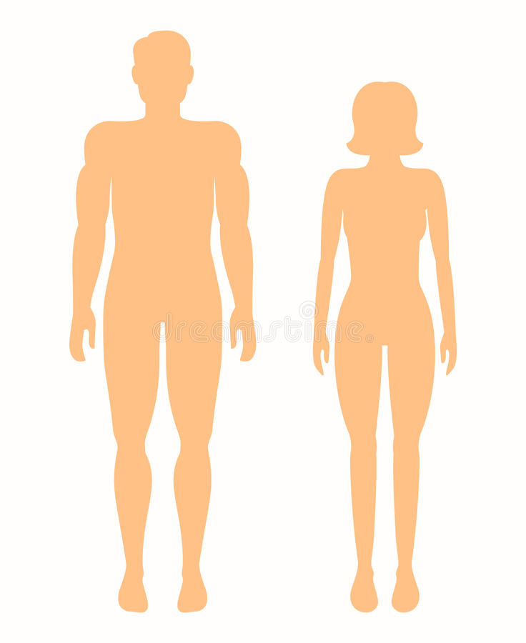 sylwetki ludzkie Wektorowy mężczyzna i kobieta ilustracja wektor