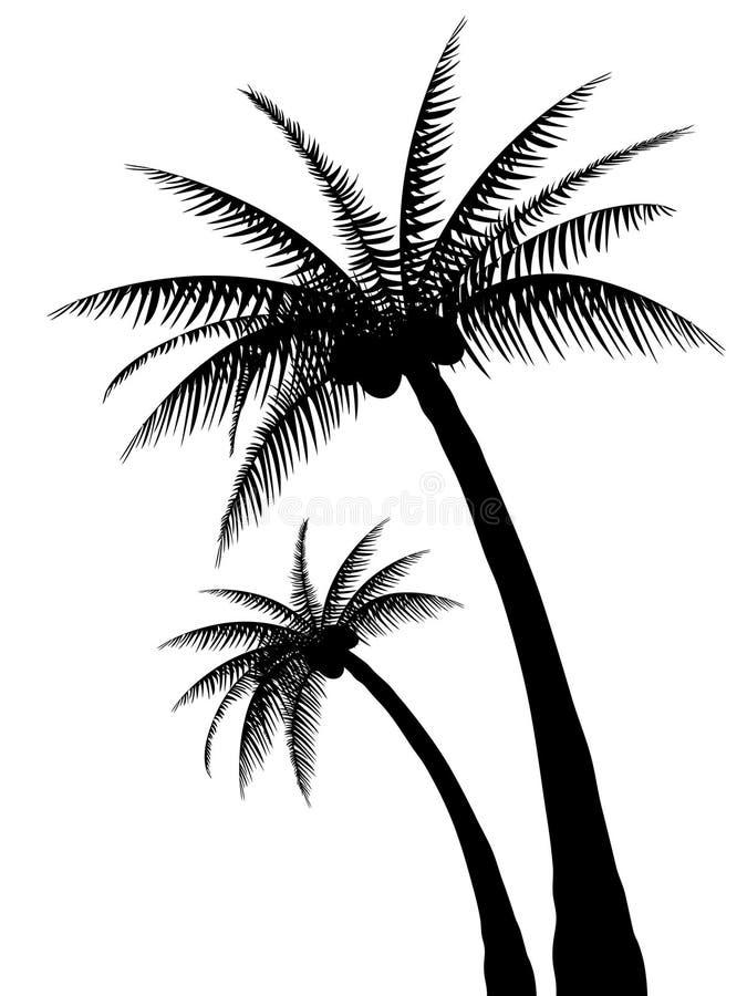 sylwetki palmowy drzewo ilustracja wektor