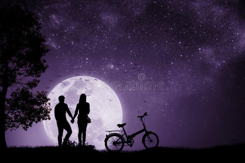 Sylwetki pary mężczyzna i kobiety mienie wręczamy księżyc w pełni noc Z bicyklem i ptakami który latają z powrotem gniazdeczko zdjęcia royalty free