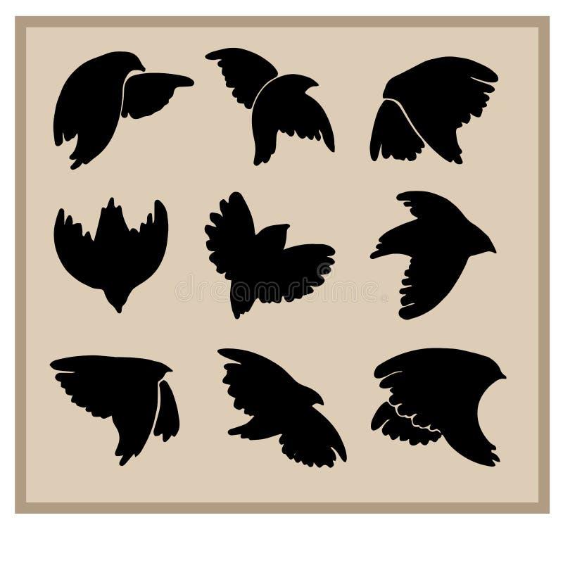 Sylwetki ptaki dla graficznego projekta ilustracja wektor