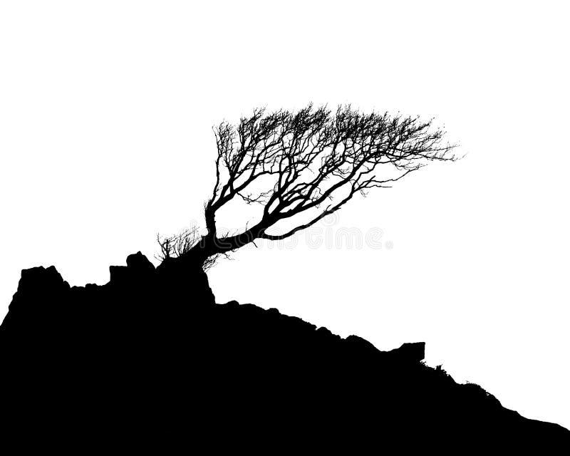 sylwetki samotny drzewo ilustracji