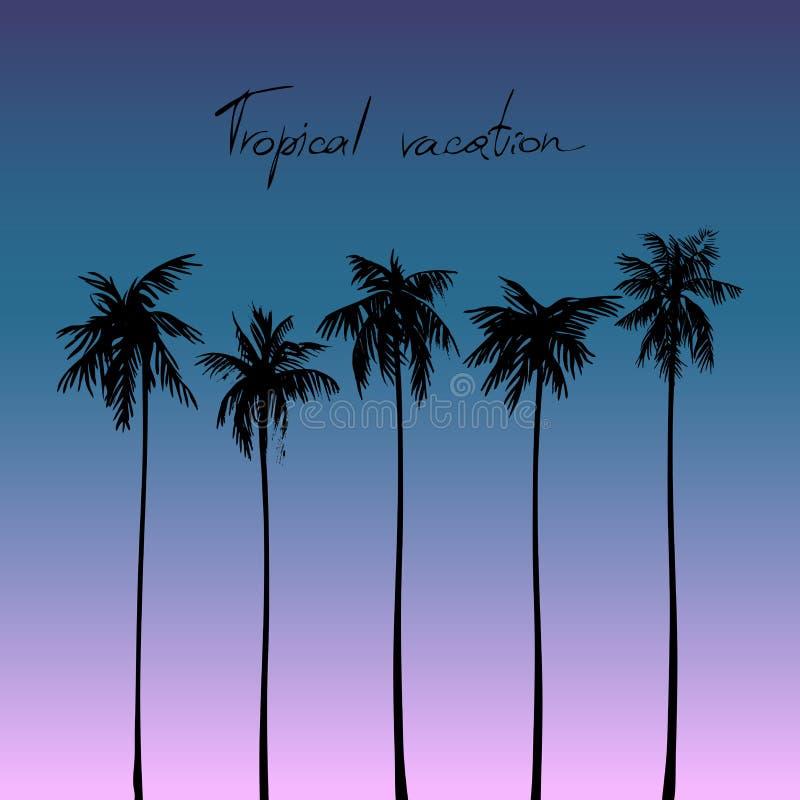 Sylwetki tropikalni drzewka palmowe przeciw niebu niebieski obraz nieba tęczową chmura wektora fotografia stock