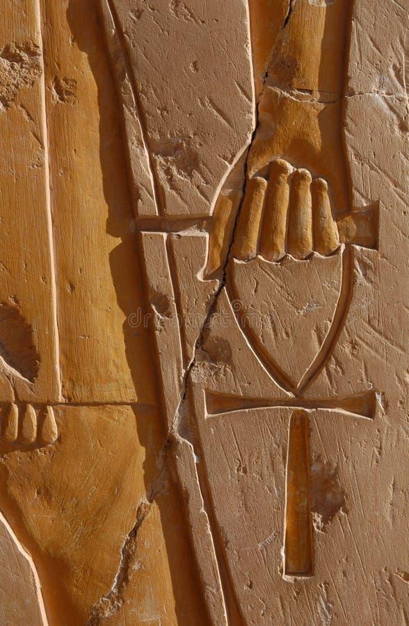 symbol życia zdjęcie royalty free