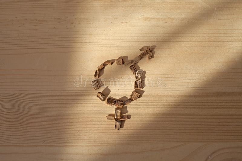 Symbol av jämställdhet på ett trä royaltyfri bild