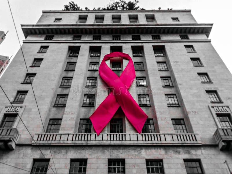 Symbol av rosa Oktober royaltyfri foto