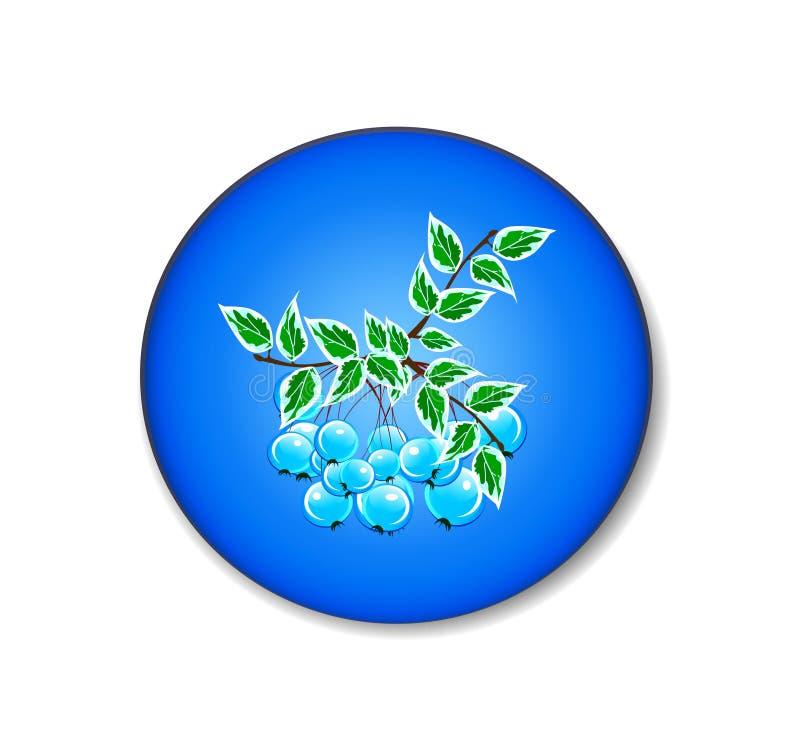 Symbol av trädfilialen med blåa bär vektor illustrationer
